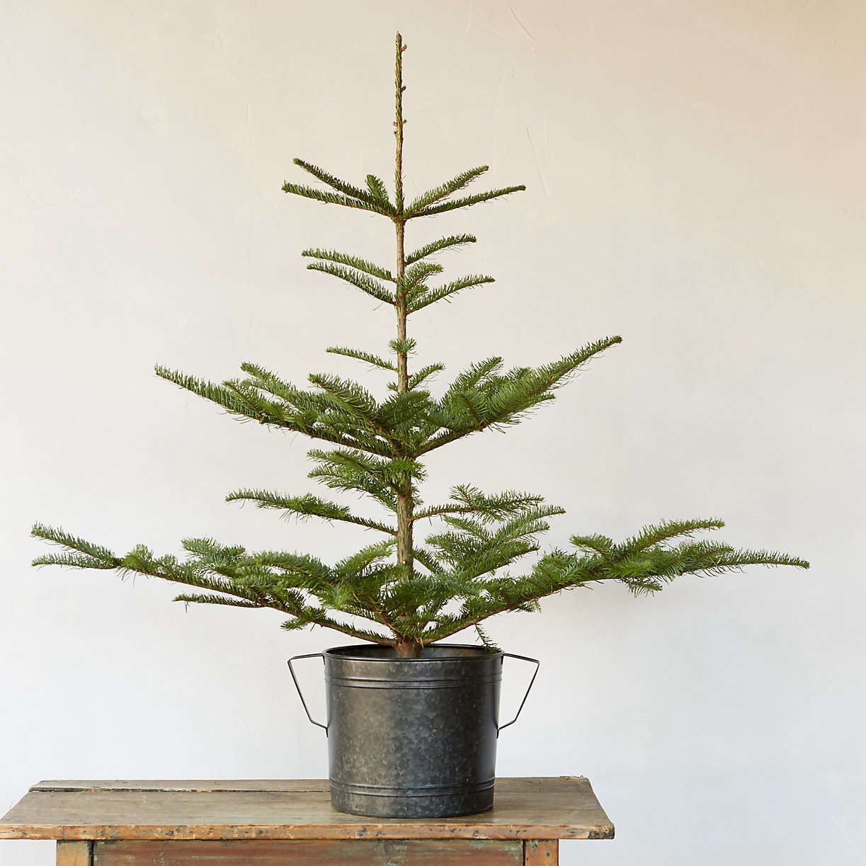 10 Easy Pieces: Tabletop Christmas Trees - The Organized Home