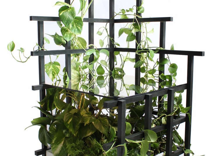 indoor vines trellis tables and shelves from moonish the