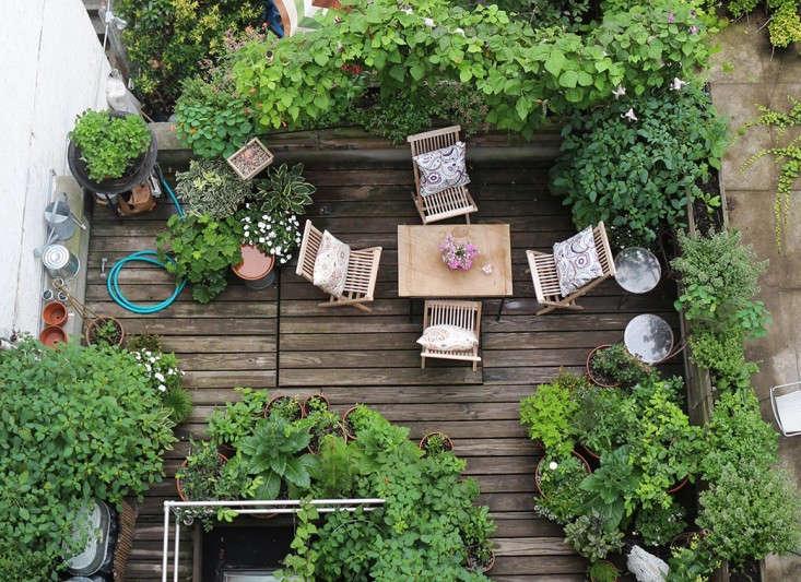 Trending On Gardenista Summer Swing The Organized Home