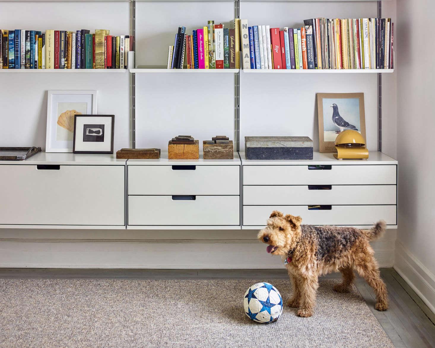 Aha! Design: The Organized Home, Dog-Friendly Edition