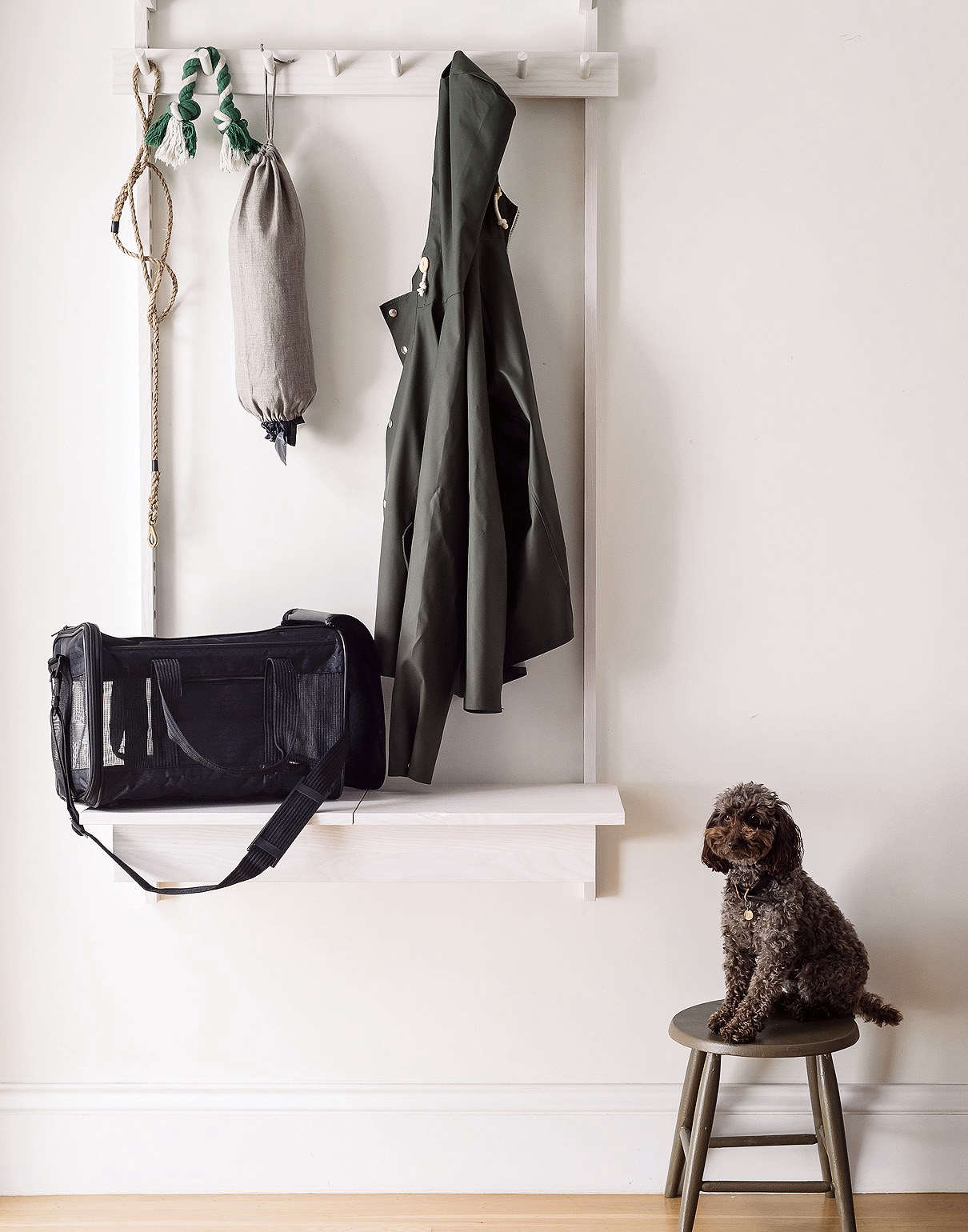 Leash in Entryway in Organized Home Book, Image by Matthew Williams